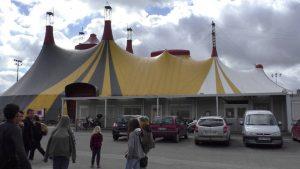 Arts-du-Cirque-Voyage-et-découverte-du-monde-professionnel.