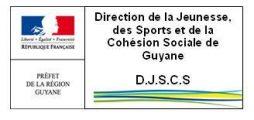 2. DJSCS
